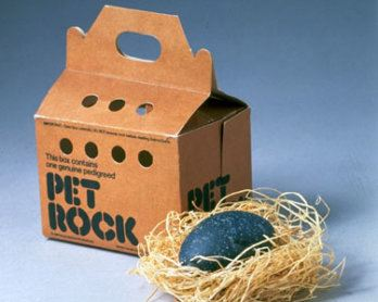 Product shot of Pet Rock, fad from mid-1